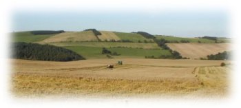 View of harvest at Horseley